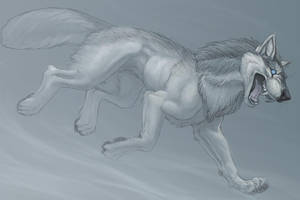 Blizzard Wolf by hibbary