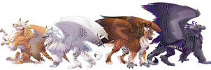 The Adhiraj Griffins by hibbary