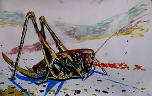 locust by squmsa