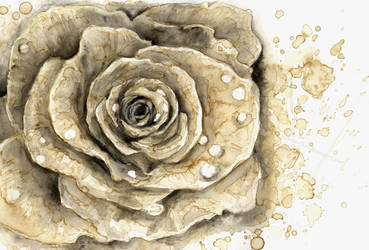 I'll give you a rose by Henu-Chan