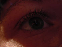 Eye by Snufver