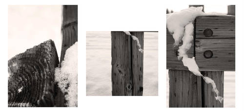 Fence Posts by ShanghaiBoo
