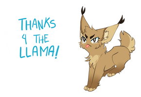 Thank you for the llama by TacoZenpai