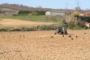 Der Bauer by dasKerst