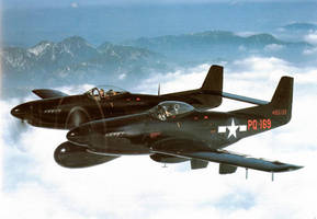F-82 Twin Mustang by GeneralTate