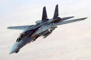Grumman F-14 Tomcat by GeneralTate