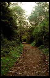 Path of no return.... by shadowwkat