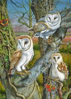 Owl Gathering by doodlebat72