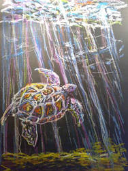 turtle by pigletface