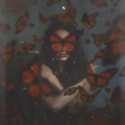 The blind  Butterfly by Ahmed-Fares94