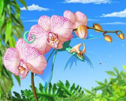 Orchid by suzidragonlady
