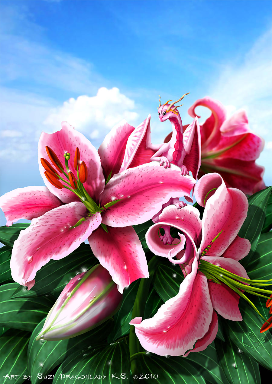 Secret Of The Lily by suzidragonlady