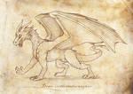 Draco occidentalis magnus by suzidragonlady
