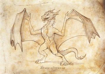 Draco africanus by suzidragonlady