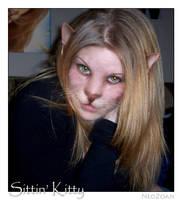 Sittin' Kitty by NeoZoan