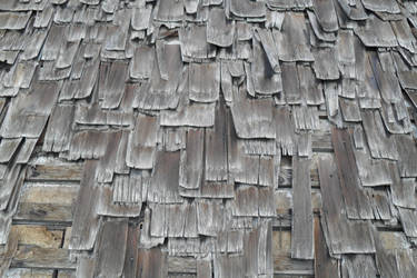kras-stock 83- shingles by kras-stock