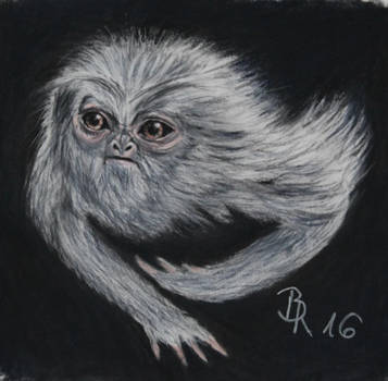 Demiguise by LoonaLucy