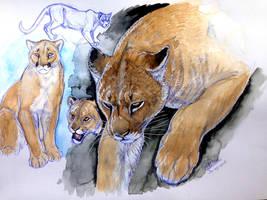 Watercolor- Cougar by NadiavanderDonk