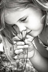 Colorless Flower by torifanning