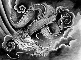 dragon by DookiePants