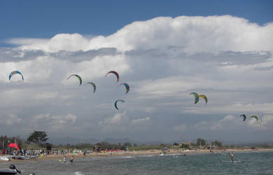 Kites by callmenotwo