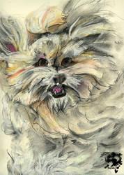 It's a dog by Tuyoki