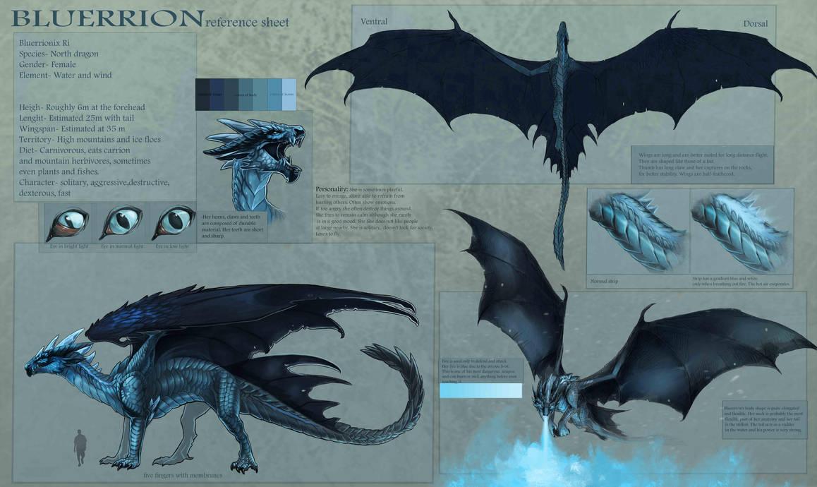 bluerrion new reference sheet by allagar on deviantart