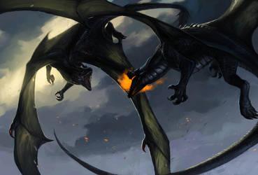 Dragon Fight by Allagar