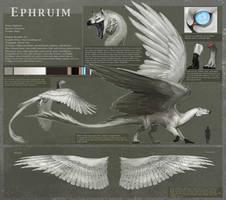 Reference - Ephruim by Allagar