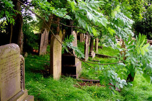 Churchyard with branch by scripturemonkey