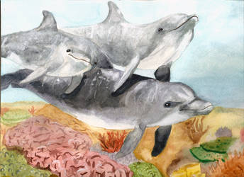 Dolphin Trio by luckycyberbunny