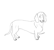 Dutschund LINE 1 by Kuurasusi