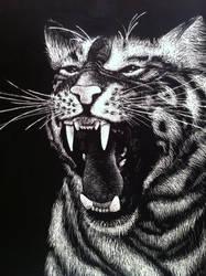 Tiger Scratchboard by EeyoresDarkSide