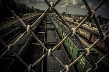 Through the fence by Peterdoesphotography