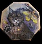 Lynx Drum by Shadowind