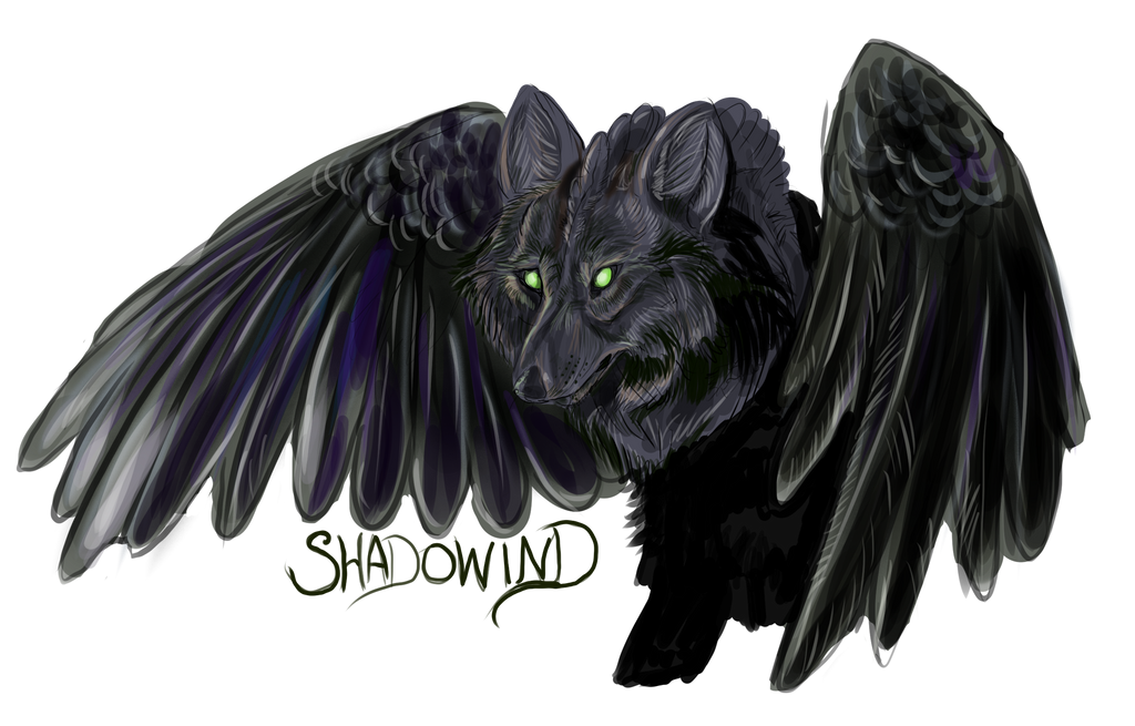Shadowind's Profile Picture
