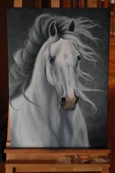 White Horse by Szeni1993