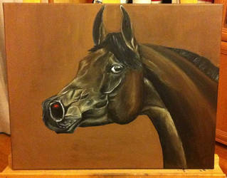 Arabian Horse in oil by Szeni1993