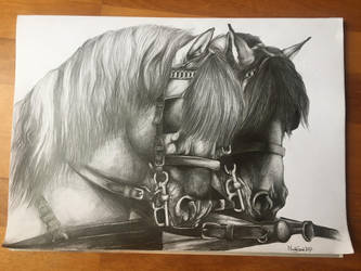 Sketch - plough horses by Szeni1993