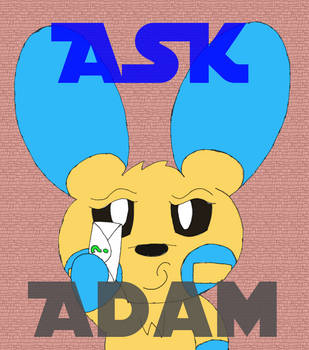 Adam Savvy the Minun Q and A by Unownace