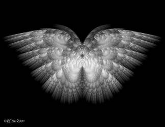 Paired White Wings by Shadoweddancer