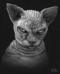 Sphynx cat by EdArtGaming