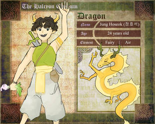Dragons and Princes Application - Hoseok by ohseok