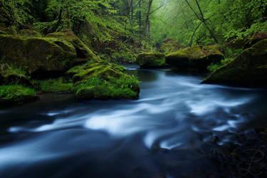 Silent Flow by da-phil