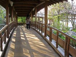 Himeji Garden by Lissou-photography