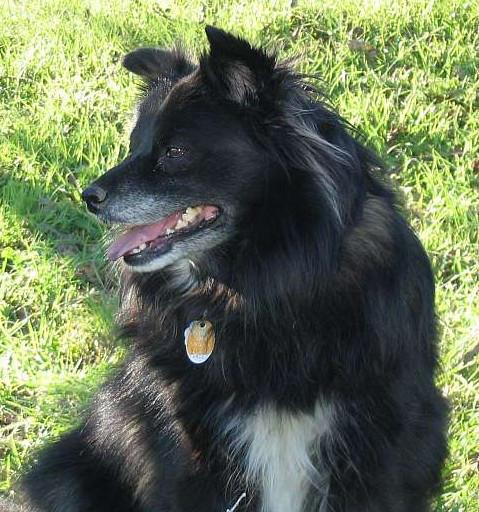 KDH's Profile Picture