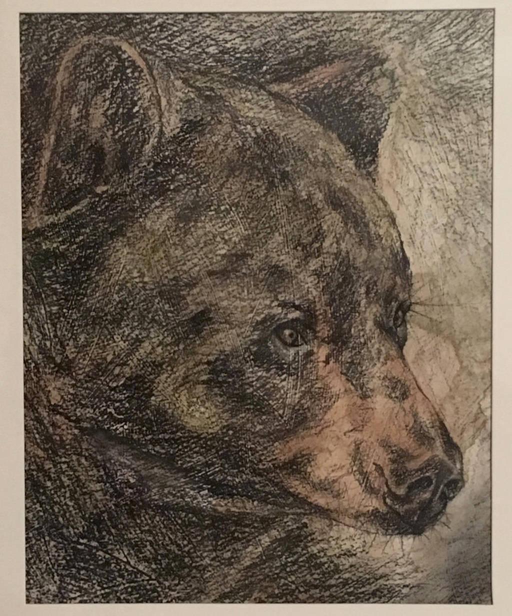 Black Bear by MaboroshiTira