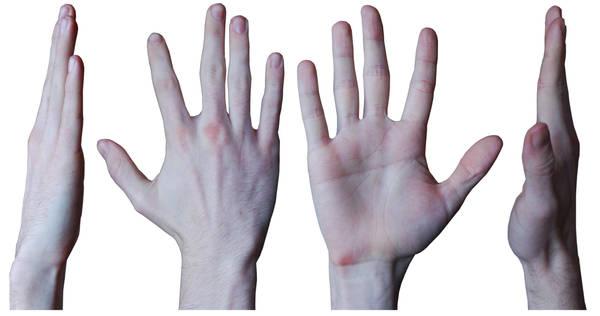 Male Hand 1 by Belastock