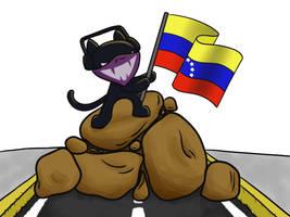 Monstercat Venezuela by SabriB
