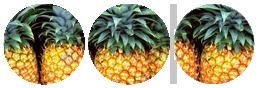 +Pineapples+ by Redkuu
